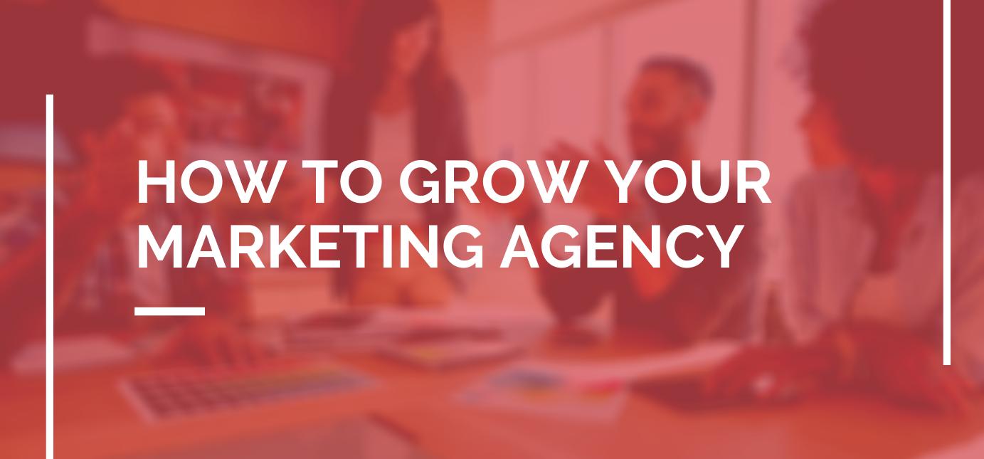 AgencyVista_Blog_GrowAgency