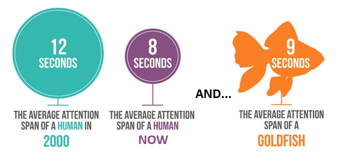 average attention span | Agency Vista