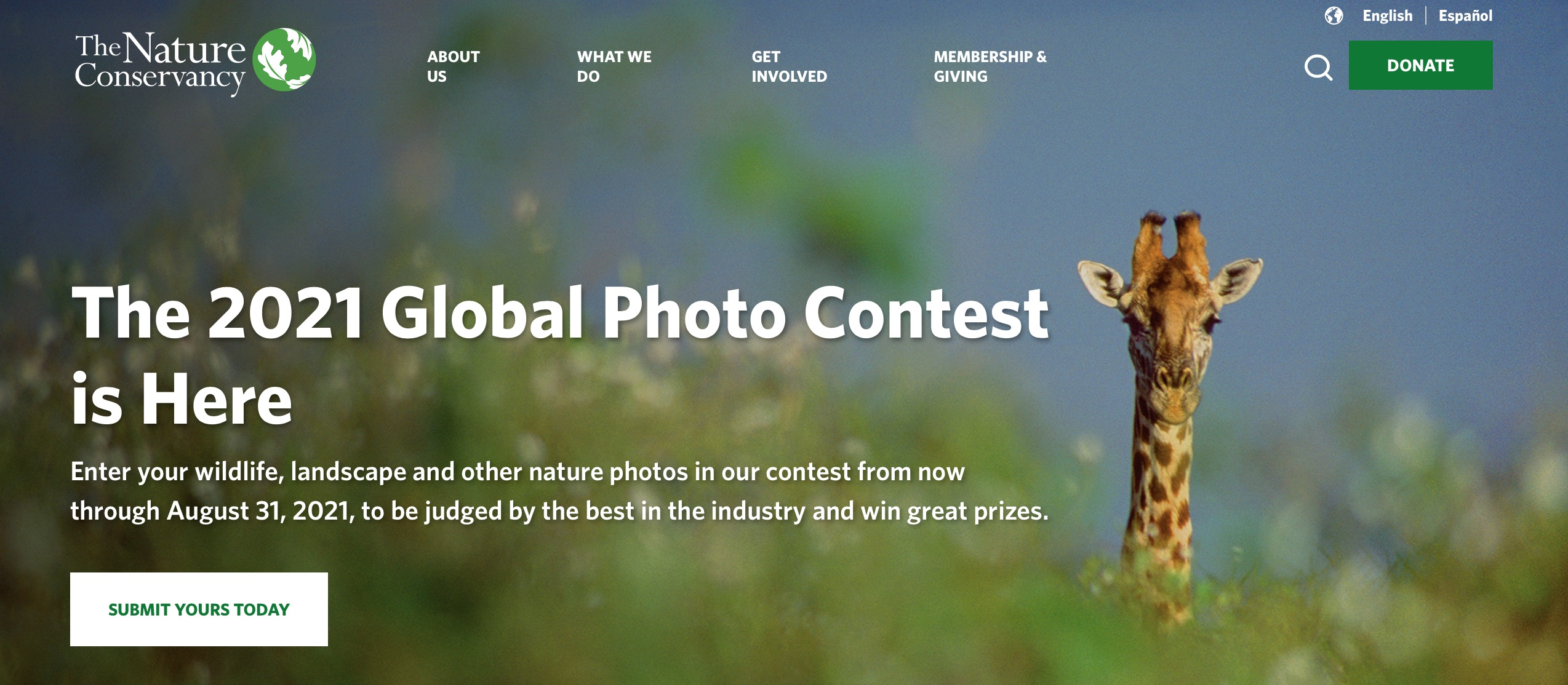 digital marketing call-to-action | The Nature Conservancy | Agency Vista